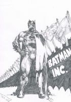 Batman Inc. by Jigmetenzin