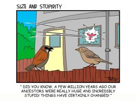 The Birds by Size-And-Stupidity