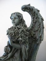 Angel and Roses 1 by lured2stock