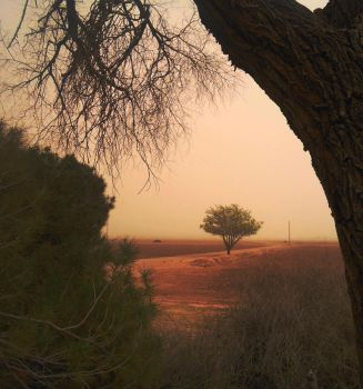 Spring Sand Storm by SharPhotography