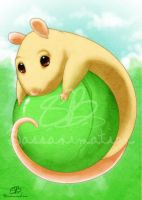 Pea Rat by bassanimation