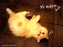 mr.muffin by kuroyobi
