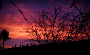 First winter sunrise (2) by April-Mo