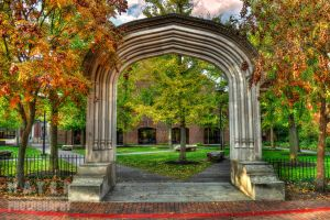 Essex Institute Historic District by Mayer-Photography