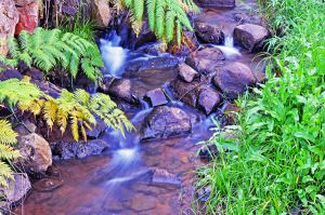 Small Stream by A-Sped-Kid