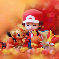 Fire Starters by pokemonphotography