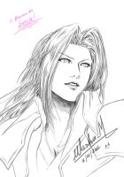 SEPHIROTH for Kuuhaku by Washu-M