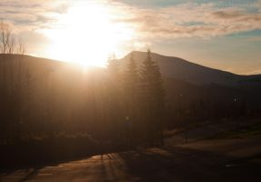 Day 59: Shadows in the Morning by siriandersen
