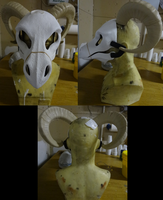 Single Curl Ram Horn Size Comparison by DreamVisionCreations