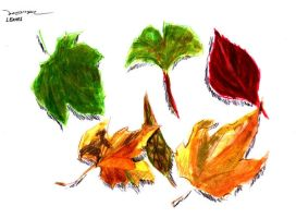 LEAVES by Painera