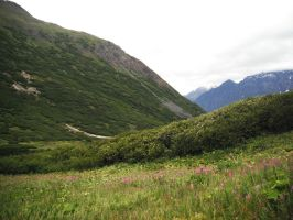 Crow's Pass Mountains Field 5 by prints-of-stock