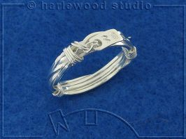 Coiled Wire Ring by harlewood