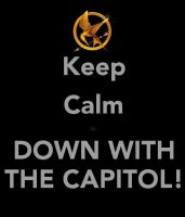 DOWN WITH THE CAPITOL by ClockworkShadows