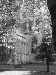 Cathedral through the trees by MynameisSteve