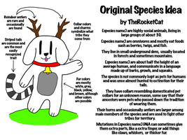 Original Species Idea (Need commenting on) by TheRocketCat