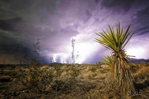 Electrifying by eprowe