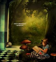 Alice in Wonderland by Angel-Ray