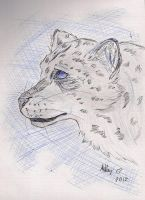 Snow Leopard by TwilightFoxx