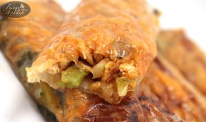 Buffalo Chicken Spring Rolls by chat-noir