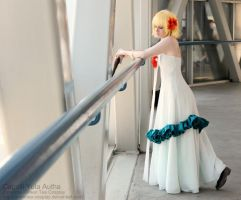 Gundam Seed Destiny: Away From Duties by GreenTea-Cosplay