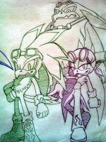 Sonic Riders_Babylon Rogues by Sky-The-Echidna
