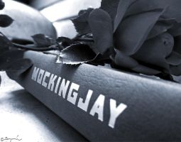Mockingjay....Forever by braidsandarrows