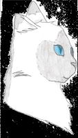 Cat drawing by Spottedmoth321