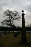 Color Cemetery Stock 5407 by Moon-WillowStock