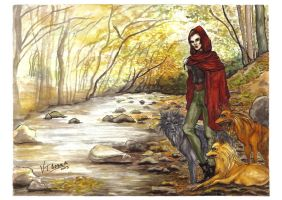 Red Riding Hood - Caperusa by VTAbdala