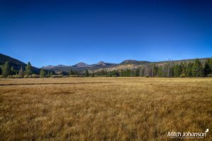 Open Autumn Meadow HDR by mjohanson