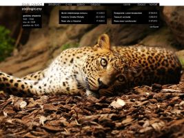 Zoo website main page by niobe-pro
