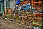 bicycle by djdevy