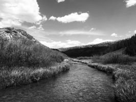 Shadow Water by OlMountainWoman