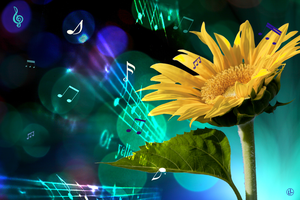 A Garden Symphony by Lindalees