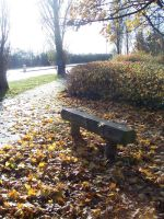 Autumn Lovers Bench by wilterdrose