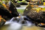 Colors of water by FlorinALF