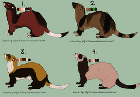 Ferret adoptables by TWDesigns
