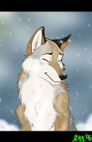 Snow by Yellow-eyes