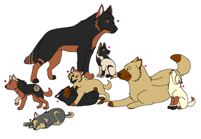 My new wolf pack by unseenangel101
