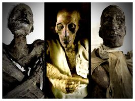 The First Three Ramses' of Egypt by Lord-Imhotep