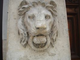 Lion's face by Aerithflowergirl5678