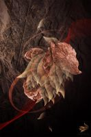 EXPLORE: Dead Leaves by axii