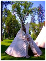 The Tipi's Branches by SLJones-photo
