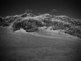 dunes2 by awjay