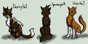 SkyClan Set 3 by GingerFlight
