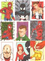 Spider-Man Archives 24 by wheels9696