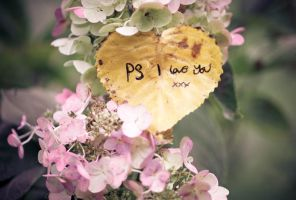 PS I Love You II by thesashabell