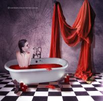 Erzsebet Bathory by vampirekingdom