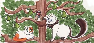 1st day Xmas - in a pear tree by mysticdragon3