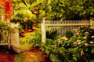 Garden Gate by HeathVideo